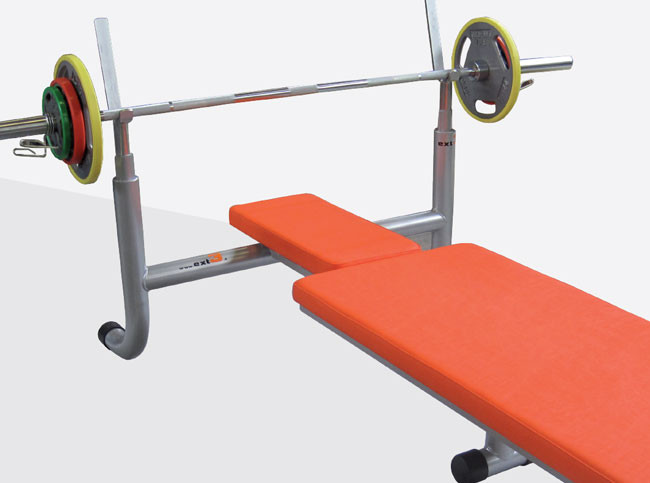 double ability bench
